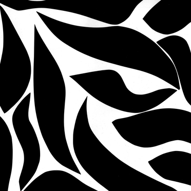 FISHI_2006-2008_web
