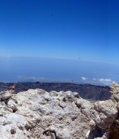 Panoramabild_Idee_ Tina_5_besser